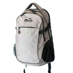 Рюкзак Tramp Clever 25 серый