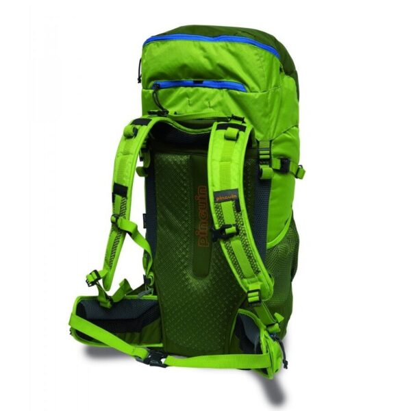 Рюкзак Pinguin Walker 50 Зеленый